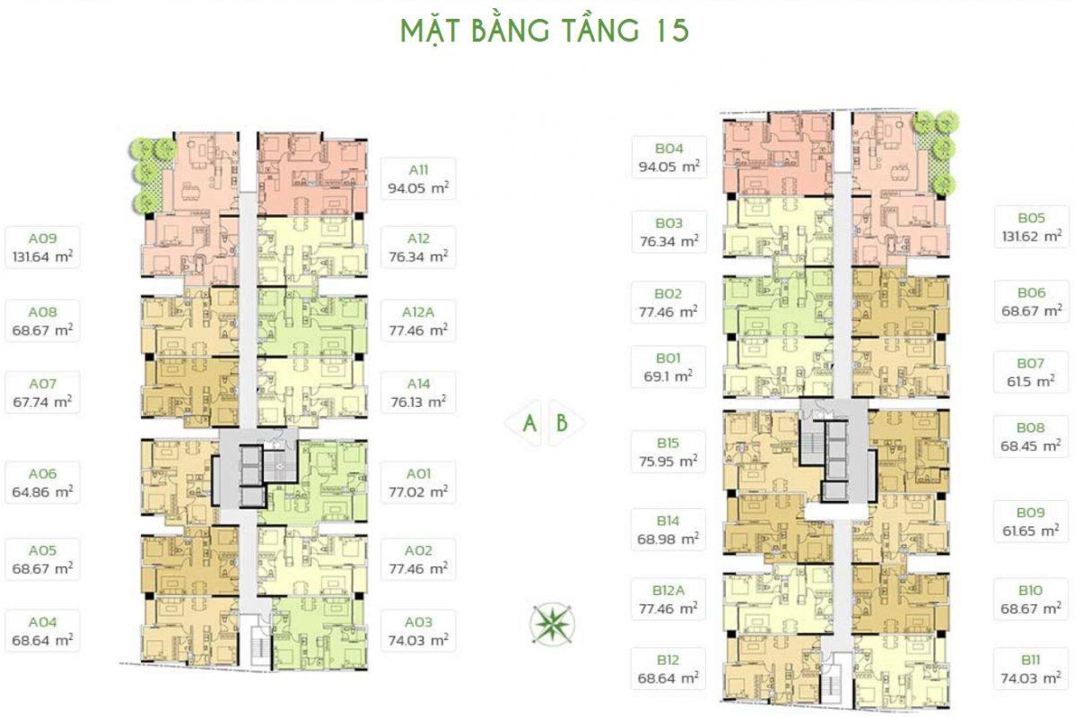 tang-15