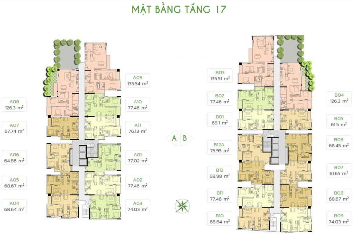tang-17