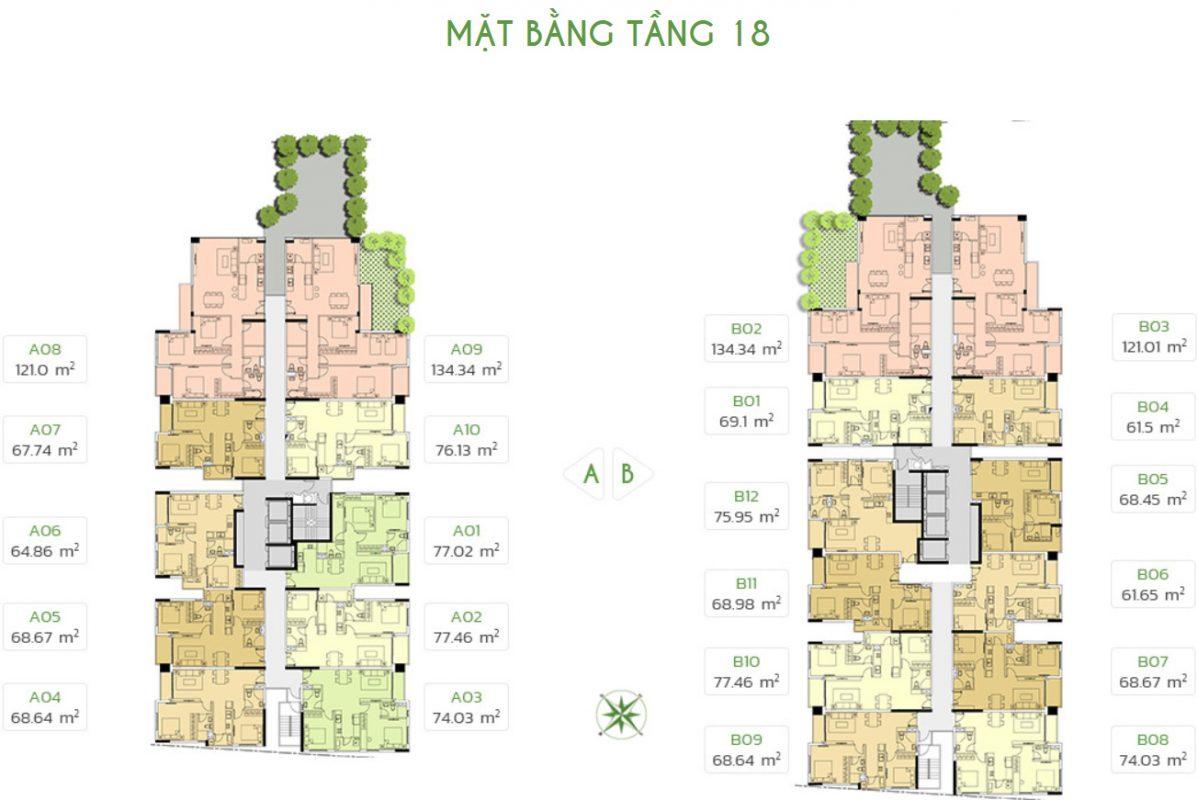 tang-18