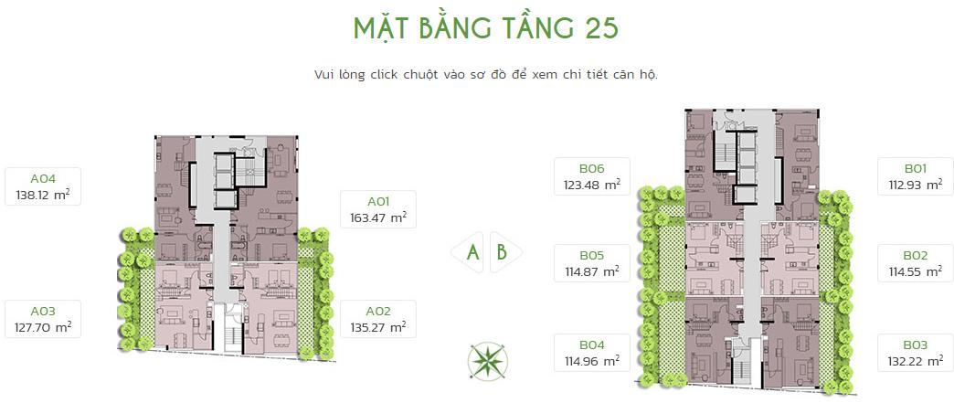 tang-25